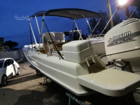 Boston Whaler con motore Johnson 200 cv